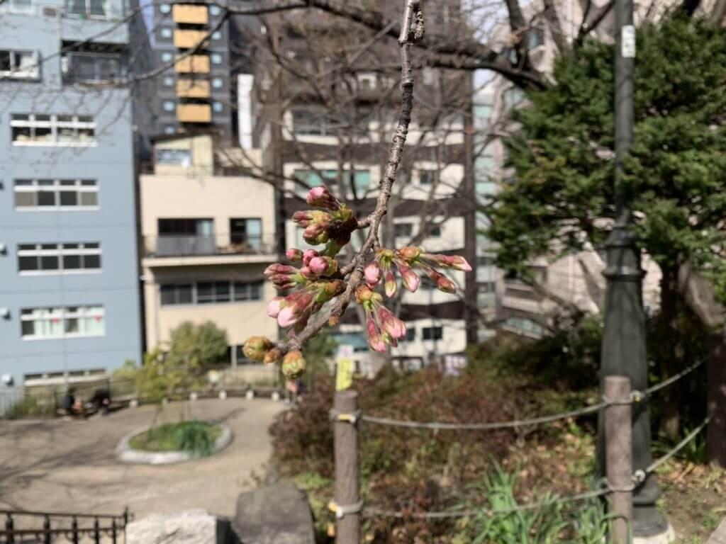 宮下公園2